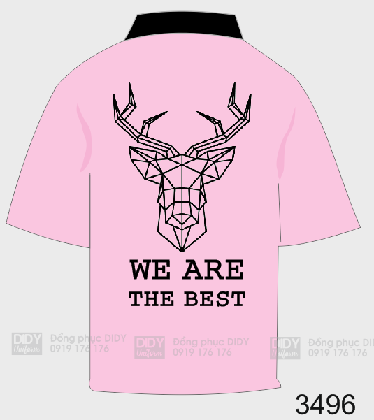 Áo lớp team a3 - We are the best